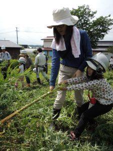 親子で下刈鎌を使い、草刈体験