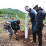 令和の改元記念で、金山町が記念造林事業として扱ってくれました。