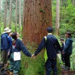 自分達も、これから手を入れていくことで美しくて強い「金山杉」になることを肌で感じました。